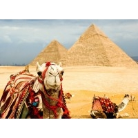 CIRCUIT EGIPT